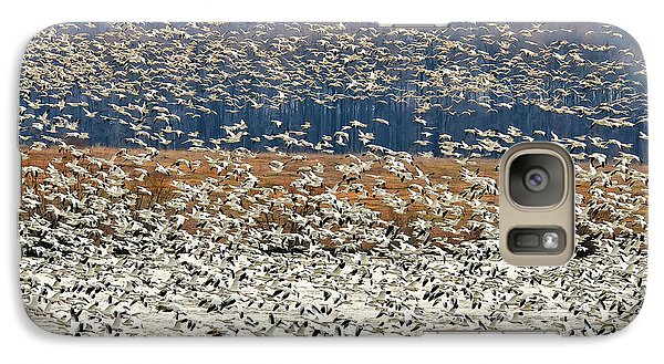 Galaxy Case featuring the photograph Snow Geese At Willow Point by Lois Bryan