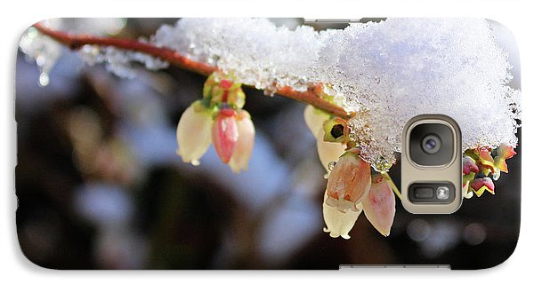 Galaxy Case featuring the photograph Snow On Blueberry Blossoms by Kristin Elmquist