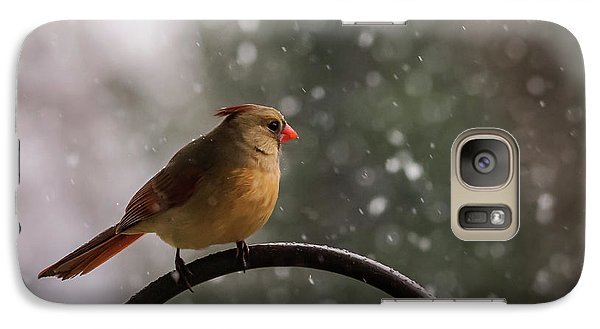 Galaxy Case featuring the photograph Snow Showers Female Northern Cardinal by Terry DeLuco