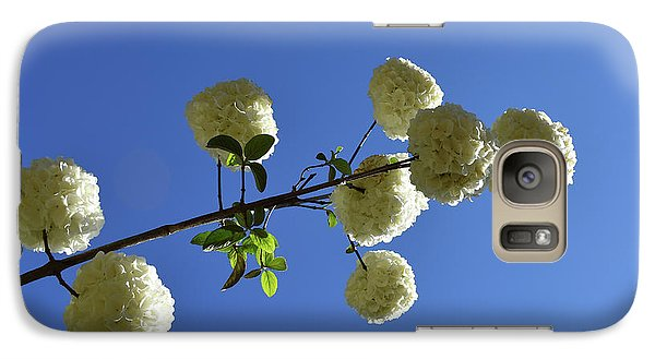 Galaxy Case featuring the photograph Snowballs On A Stick by Skip Willits