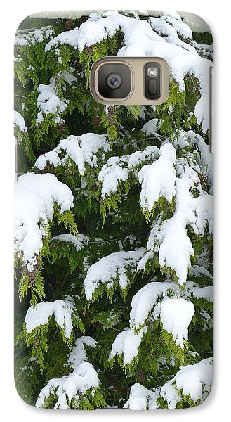 Galaxy Case featuring the photograph Snowy Cedar Boughs by Will Borden