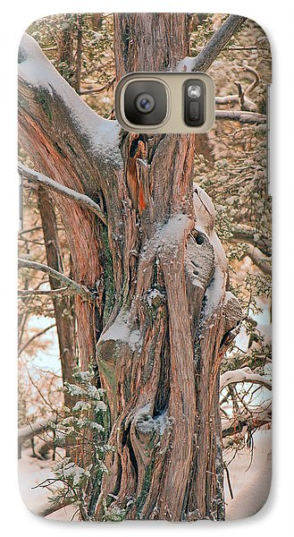 Galaxy Case featuring the photograph Snowy Dead Tree by Donna Greene