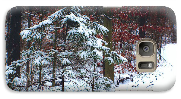 Galaxy Case featuring the photograph Snowy Little Fir by Sandy Moulder
