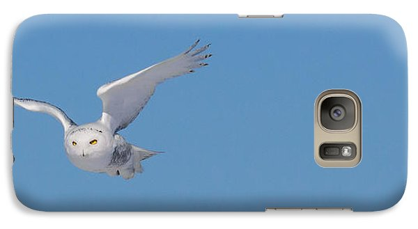 Galaxy Case featuring the photograph Snowy Owl - Dive by Dan Traun