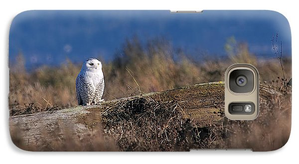 Galaxy Case featuring the photograph Snowy Owl On Log by Sharon Talson