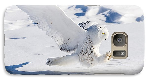 Galaxy S7 Case featuring the photograph Snowy Owl Pouncing by Rikk Flohr
