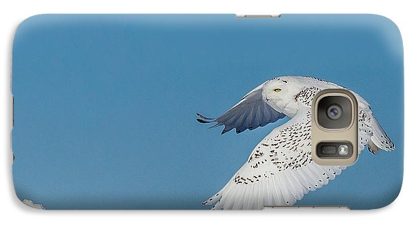 Galaxy Case featuring the photograph Snowy Owl - Taking Flighty by Dan Traun