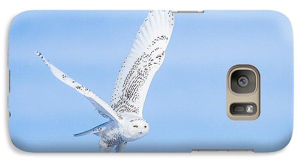 Snowy Owls Soaring Galaxy S7 Case