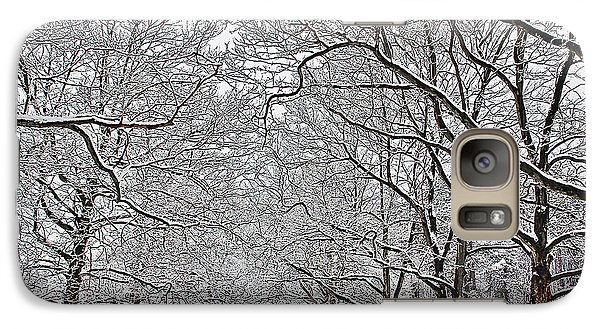 Galaxy Case featuring the photograph Snowy Treeline by Aimee L Maher Photography and Art Visit ALMGallerydotcom