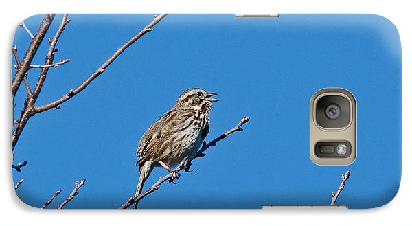 Galaxy Case featuring the photograph Song Sparrow by Michael Peychich