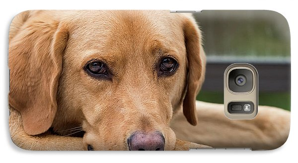 Galaxy Case featuring the photograph Soulful Eyes by Kathy King