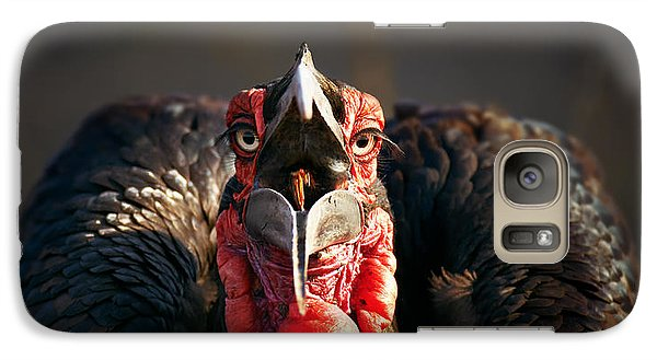 Southern Ground Hornbill Swallowing A Seed Galaxy S7 Case