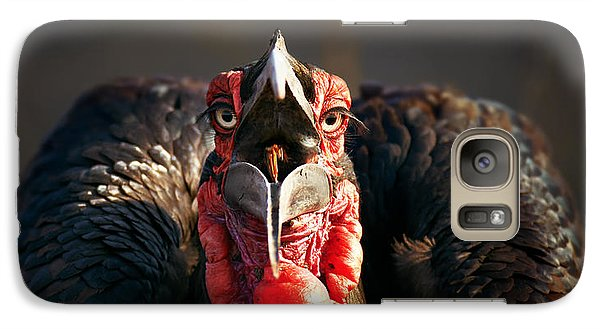 Southern Ground Hornbill Swallowing A Seed Galaxy S7 Case by Johan Swanepoel