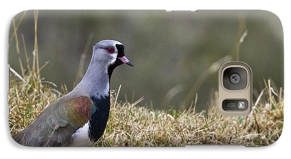 Southern Lapwing Galaxy Case by Jean-Louis Klein & Marie-Luce Hubert