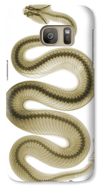 Viper Galaxy S7 Case - Southern Pacific Rattlesnake, X-ray by Ted Kinsman