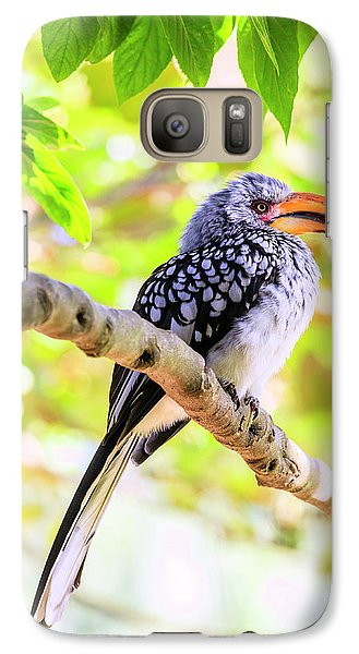 Galaxy Case featuring the photograph Southern Yellow Billed Hornbill by Alexey Stiop