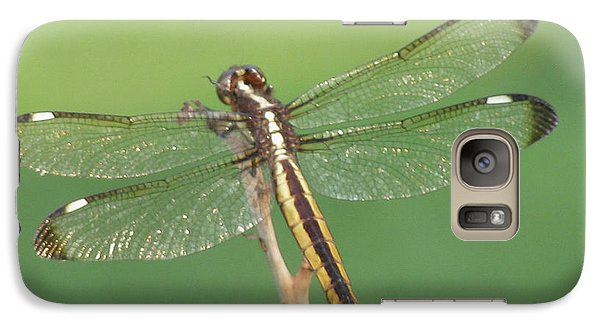 Galaxy Case featuring the photograph Spangled Skimmer Dragonfly Female by Donna Brown