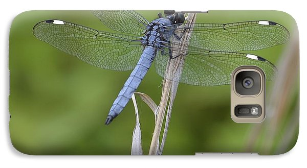 Galaxy Case featuring the photograph Spangled Skimmer by Randy Bodkins
