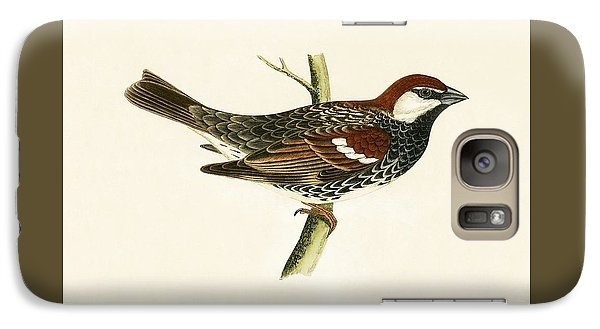 Spanish Sparrow Galaxy S7 Case