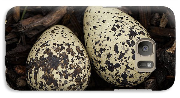 Speckled Killdeer Eggs By Jean Noren Galaxy S7 Case