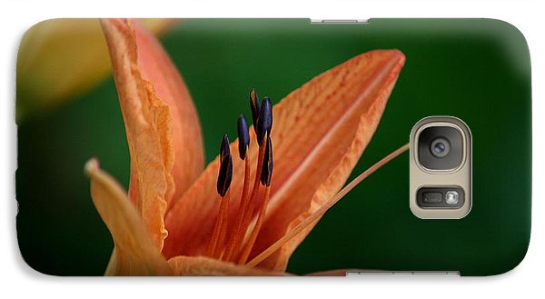 Galaxy Case featuring the photograph Spider Lily 2 by Cathy Harper