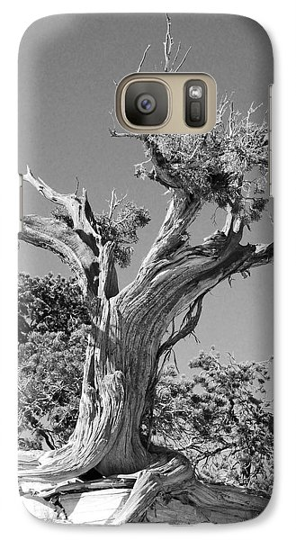 Galaxy Case featuring the photograph Spirit Tree by Maggy Marsh