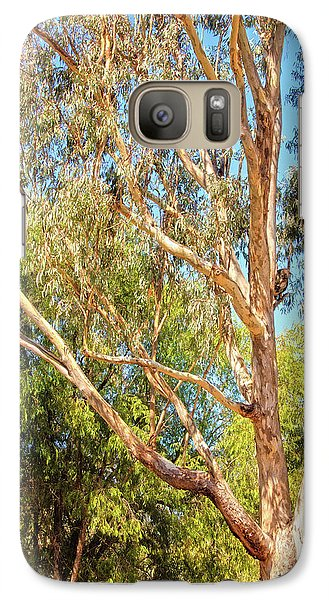 Galaxy Case featuring the photograph Spot The Koala, Yanchep National Park by Dave Catley