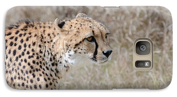 Galaxy Case featuring the photograph Spotted Beauty 2 by Fraida Gutovich