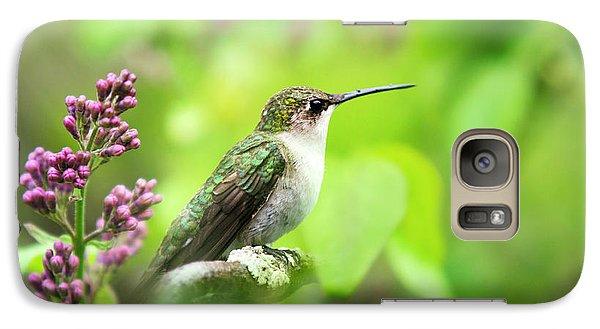 Spring Beauty Ruby Throat Hummingbird Galaxy S7 Case