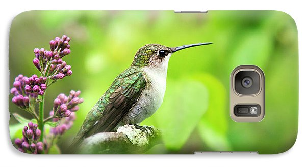 Spring Beauty Ruby Throat Hummingbird Galaxy S7 Case by Christina Rollo