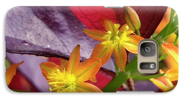 Galaxy Case featuring the photograph Spring Blossoms 2 by Stephen Anderson