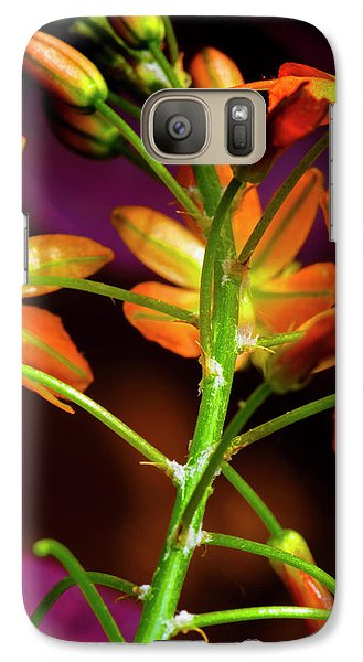 Galaxy Case featuring the photograph Spring Blossoms 3 by Stephen Anderson