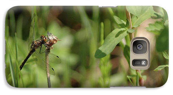Galaxy Case featuring the photograph Spring Dragonfly by LeeAnn McLaneGoetz McLaneGoetzStudioLLCcom