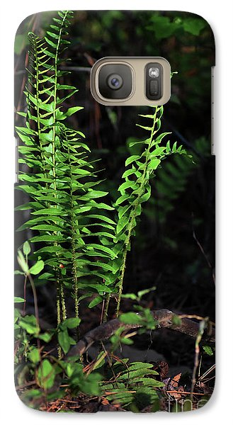 Galaxy Case featuring the photograph Spring Ferns by Skip Willits