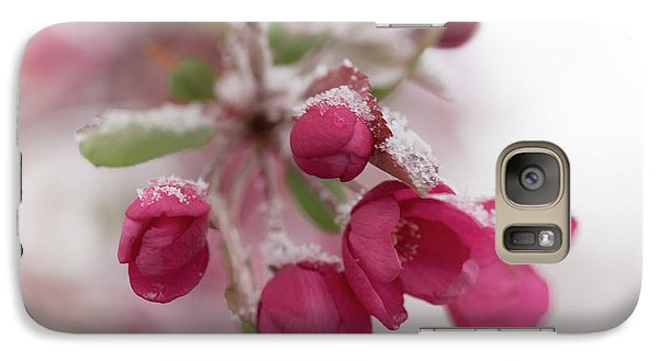 Galaxy S7 Case featuring the photograph Spring Snow by Ana V Ramirez