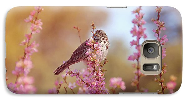 Galaxy Case featuring the photograph Spring Sparrow by Lynn Bauer
