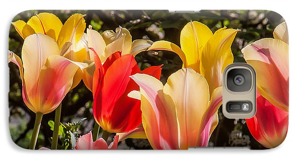 Galaxy Case featuring the photograph Spring Tuliips by Jim Moore