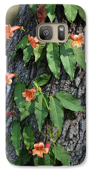 Galaxy Case featuring the photograph Vinery by Skip Willits