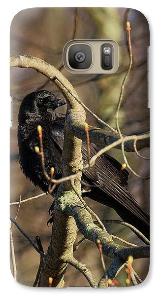 Galaxy Case featuring the photograph Springtime Crow by Bill Wakeley