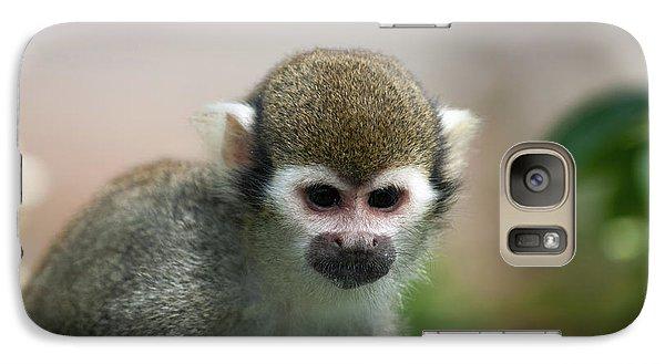 Squirrel Monkey Galaxy S7 Case by Amanda Elwell