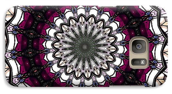 Galaxy Case featuring the photograph Stained Glass Kaleidoscope 4 by Rose Santuci-Sofranko