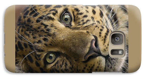 Galaxy Case featuring the photograph Stare Down by Cheri McEachin