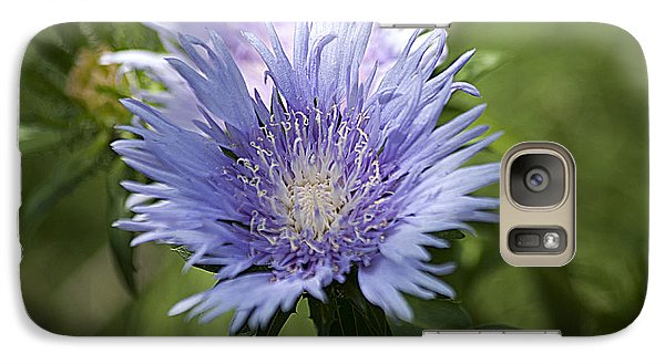 Galaxy Case featuring the photograph Stokes Aster 20120703_125a by Tina Hopkins