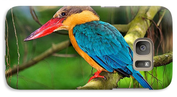 Stork-billed Kingfisher Galaxy Case by Louise Heusinkveld