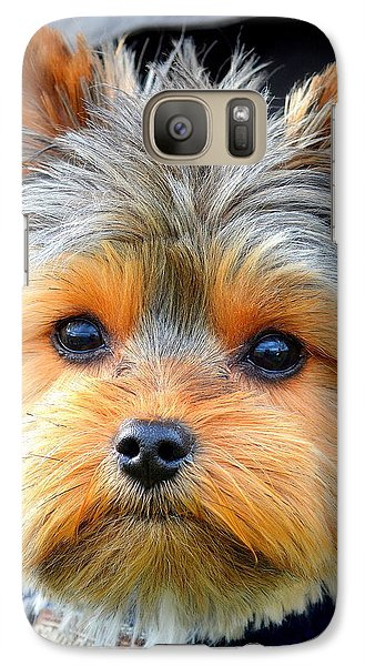 Galaxy Case featuring the photograph Such A Face by Barbara Dudley