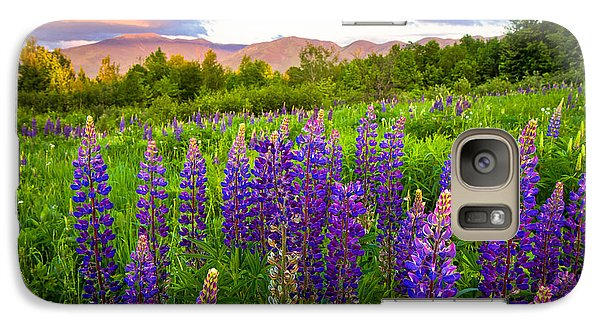 Sugar Hill Lupines Galaxy S7 Case