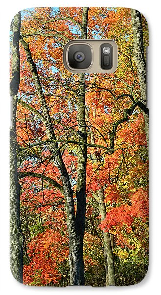 Galaxy Case featuring the photograph Sugar Maple Brilliance by Ray Mathis