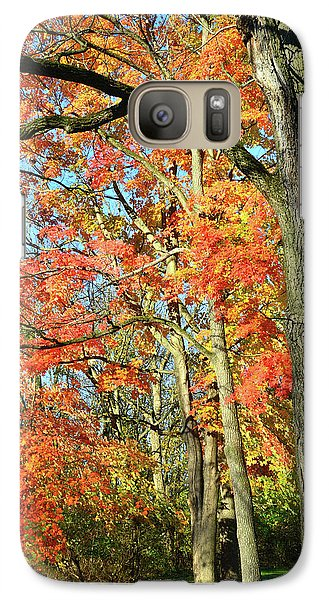 Galaxy Case featuring the photograph Sugar Maple Stand by Ray Mathis
