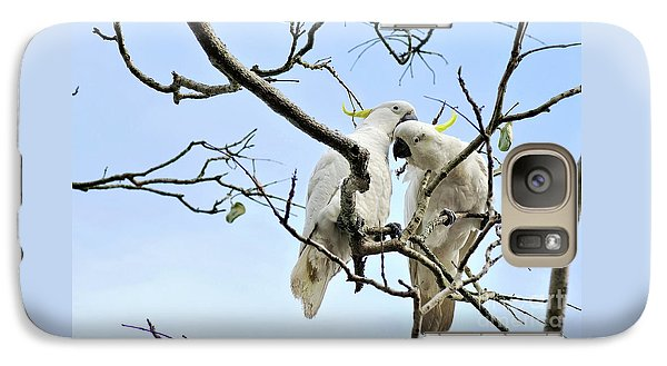 Sulphur Crested Cockatoos Galaxy S7 Case by Kaye Menner