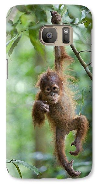 Sumatran Orangutan Pongo Abelii One Galaxy S7 Case by Suzi Eszterhas
